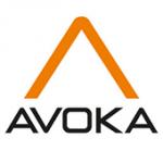 Avoka Enhances Transact Insights with Customer Journey Visualization