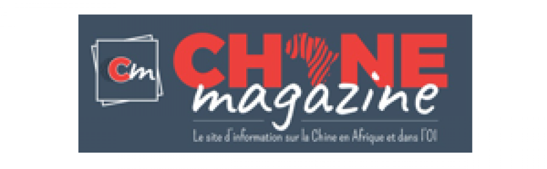 Tribune sur les moyens de réussir sa présence Internet en Chine